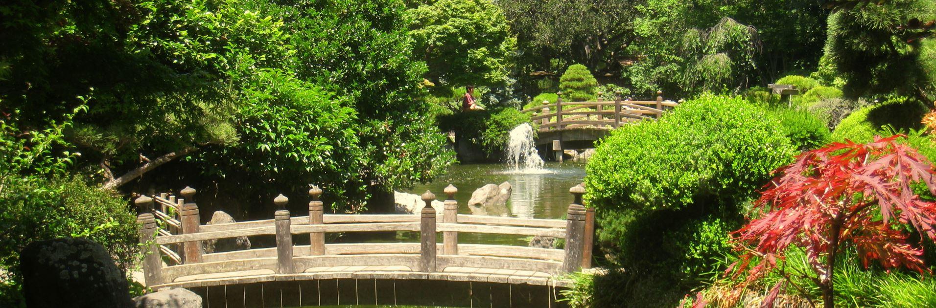 Japanese Garden, San Mateo