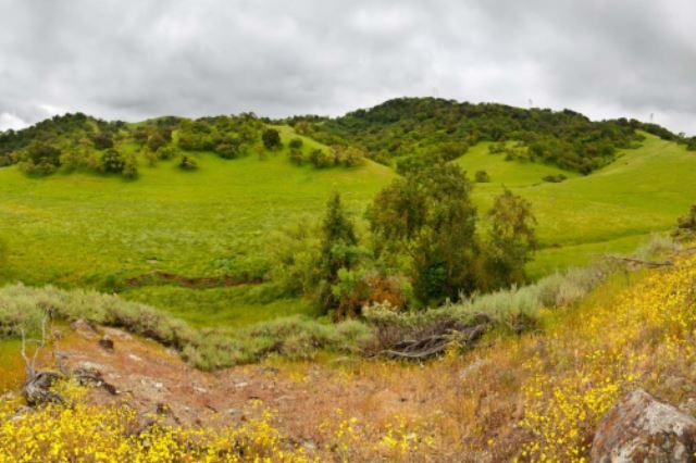 coyote-valley-preserve